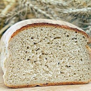 食パンとか言う意味不明な食べ物『焼いて作ったのに何で焼くんや?』『パンは食べるものなのになんで食パンなん?』『主食用パンやで?』