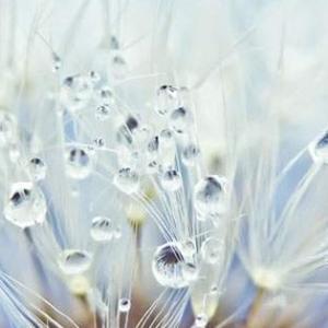 繊細さは宝物な理由3つ、生かす方法いくらでも。
