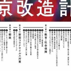 ホリエモン(堀江貴文)の東京改造計画って何?その37項の内容とは?