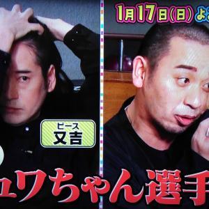 テレビ千鳥こっそりシュワちゃん選手権の美女は誰?