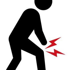 膝関節の痛み! 膝痛に大きく関与する膝蓋下脂肪体とは?
