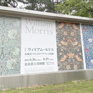 ウィリアム・モリス 原風景でたどるデザインの軌跡(奈良県立美術館)に行きました