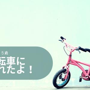 怖がり5歳娘が自転車に乗れた練習法|アイデスキックバイク|千葉市交通公園