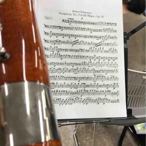 シューマン交響曲第3番
