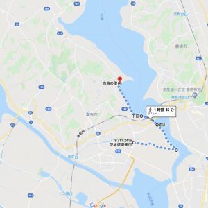 北浦サイクリング 道の駅いたこ〜北浦白鳥飛来地