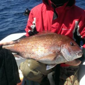 【陸奥湾真鯛の釣り準備編】船釣りの基本タックルと二つの餌釣り仕掛けをご紹介!