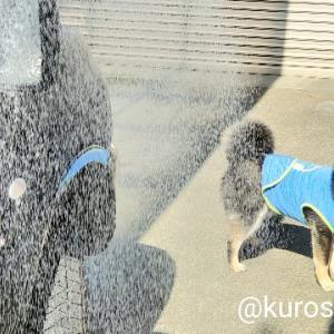 洗車日和!
