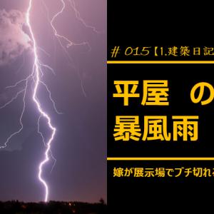 #015 平屋 のち 暴風雨