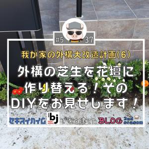 #537 外構の芝生を花壇に作り替える!そのDIYをお見せします!