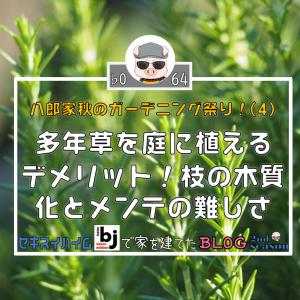 ♭064 多年草を庭に植えるデメリット!茎の「木質化」とメンテナンスの難しさ