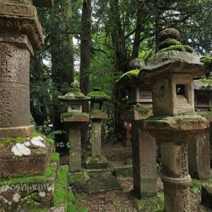 春日大社 3000基ある灯籠の中から「春日大明神」と彫られたレアな石灯籠15基を探してみよう♪
