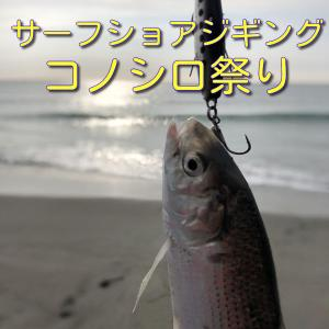 2021年 伊良湖~遠州サーフ ショアジギング コノシロ祭り おまけでヒラメ