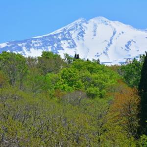 鳥海山麓で新緑と戯れる。(2014年5月中下旬)
