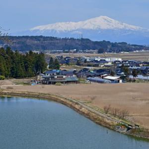 庄内から見た鳥海山 (2020年3月30日)
