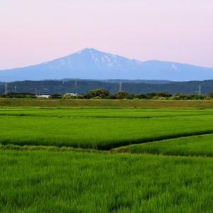鳥海山・お花見トレッキング。前編(2021年7月15日)