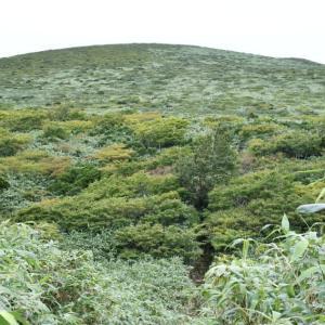 初秋の湯森山と笹森山。(2021年9月1日)