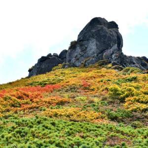 三ツ石山でリンドウを見る。(2021年9月11日)