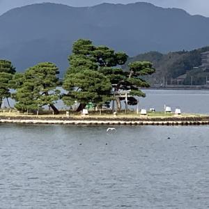 山陰ツアー後半in竹生島神社行って熊野大社行って江島大橋行って鳥取砂丘行った!
