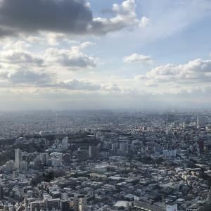 「渋谷スカイ」からの眺めは最高!