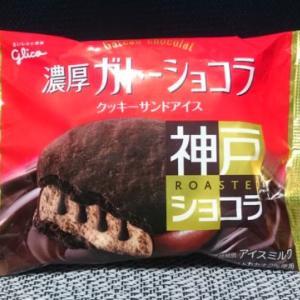 4種類のチョコが楽しめる!濃厚ガトーショコラ クッキーサンドアイス