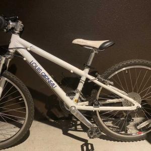 息子の自転車にサドルバックをつけてみようかと・・・。なかなかうまくいかないこともあるものね。