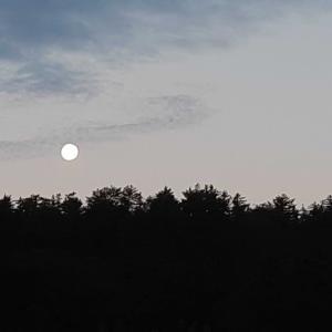 中秋の名月の残り香 早朝の月
