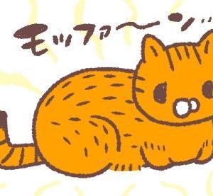 猫臭ソムリエの家系