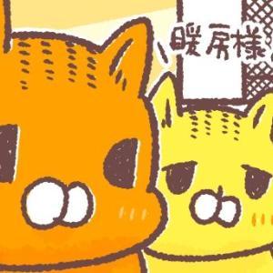 暖房様と猫たち