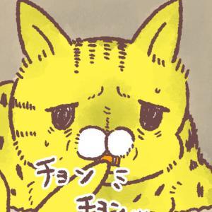 歯磨き練習を始めた猫