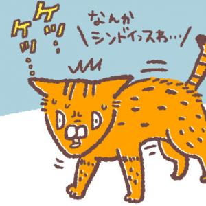 【閲覧注意】猫を飼い始めた頃に出会った衝撃のアイツ