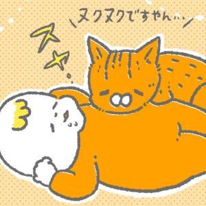 どうしても赤子で暖をとりたい猫