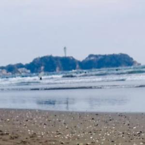 ㊹ふたたび海で