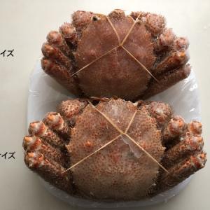 ぎょれん北海道産ボイル毛がに 特大と大サイズを食べ比べ