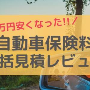 自動車保険を安くしたい!一括見積で、すぐ2万円節約できた件(沖縄も全国も)