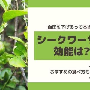 シークワーサーは血圧を下げる?効能やおすすめの食べ方、沖縄産の通販サイトも