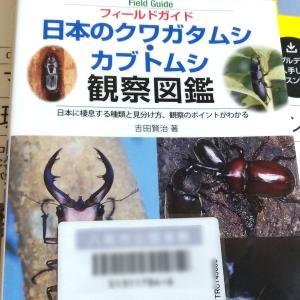 【書籍】2019.0120 図書館本+ランタンレビュー