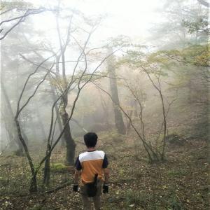 【ヒメオオクワガタ 探索】2020.1011 奈良高山 オストラヴァ( ..)φ