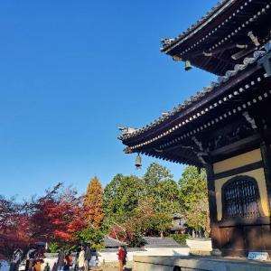 紅葉🍁京都旅