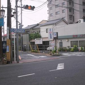 東京/青梅 梅と朝顔と