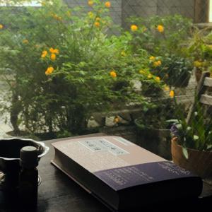 臼田捷治『〈美しい本〉の文化誌 装幀百十年の系譜』