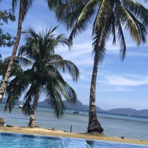 【セブ島でも感染者か!?】フィリピンのセブ島やマニラではコロナウィルスはどうなっているの?