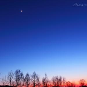 上弦の月と宵の明星