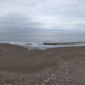 2020年 5月16日 宮城県東松島市の野蒜海岸の散策