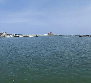 2020年 6月6日 宮城県亘理町の海産弁当のフラミンゴと鳥の海