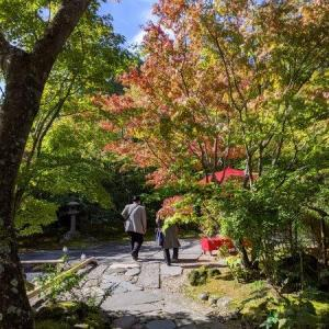 2020年 10月18日 宮城県松島町の円通院