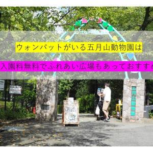 ウォンバットがいる五月山動物園は入園料無料でふれあい広場もあっておすすめ