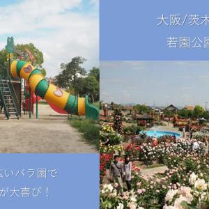 【大阪/茨木】若園バラ公園は遊具と広いバラ園で子どもが大喜び!