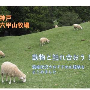【神戸/六甲山牧場】動物と触れ合おう!混雑状況やおすすめの服装をまとめました