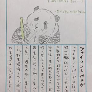 92日後に終わる日記、22日目は「ジャイアントパンダ」!