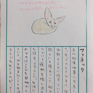 92日後に終わる絵日記、「フェネック」「ホッキョクグマ」「ヒメウォンバット」が公開!